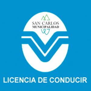 00021.010.MSC.LICENCIA DE CONDUCIR